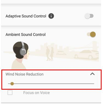 Wind Noise Reduction setting