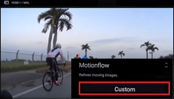 Motionflow menu showing the Custom option