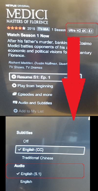 No 5 1 Audio From Netflix After Updating the Android TV | Sony USA