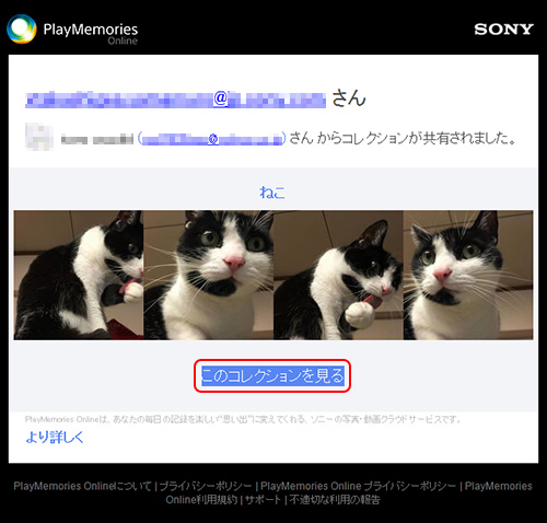 PlayMemories Onlineからのメール