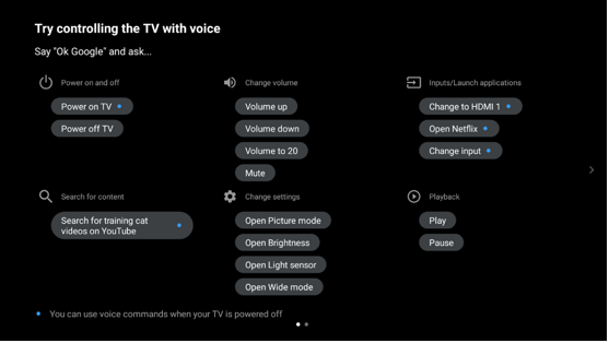 Voice hints screen