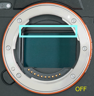 Image sensor visible and tilted