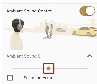 Image that Ambient Sound Control (level 9) is selected