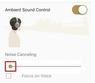 Image that Noise Canceling is selected