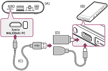 Connection diagram of a PHA-2A amplifier connected with a USB adapter