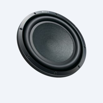 Picture of 12 in (30 cm) Subwoofer