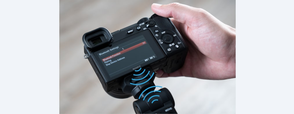 Images of Shooting Grip With Wireless Remote Commander