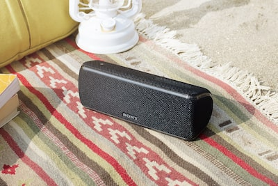 Dustproof SRS-XB31 speaker