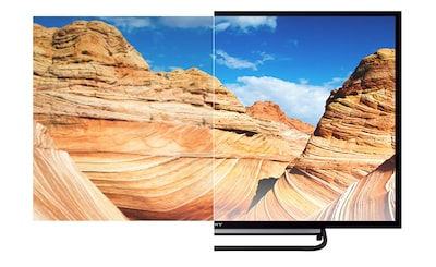 Lifelike pictures on 32 in (81 cm) TV from Sony