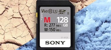 Picture of SF-M Series UHS-II SD Memory Card