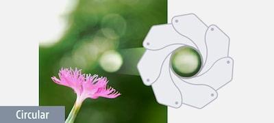 7-blade circular aperture