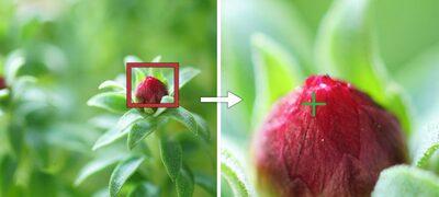 Focalizare automată în modul mărire pentru focalizare