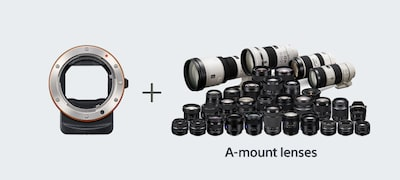 Focal plane phase-detection AF for A-mount lenses