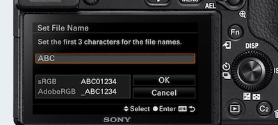 File Name Setting