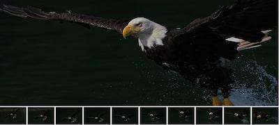Έως και 10 fps με παρακολούθηση αυτόματης εστίασης/έκθεσης