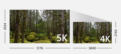 Clear, natural, realistic 4K movies