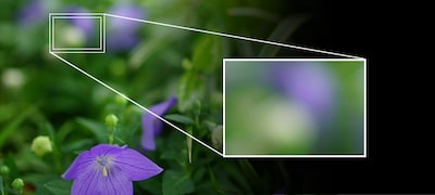 From ZEISS sharp to smooth bokeh