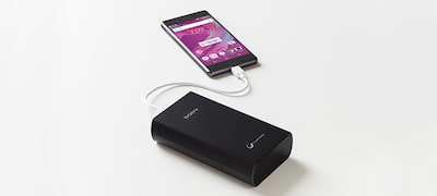 Picture of High-capacity Portable USB Charger
