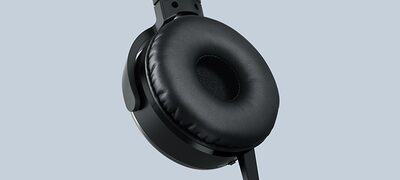 Picture of XB450BV EXTRA BASS Vibration Headphones