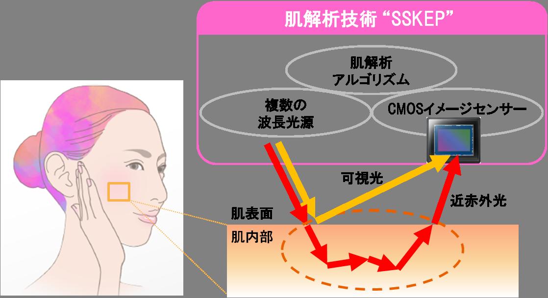 """肌解析技術""""SSKEP"""" (開発発表)"""